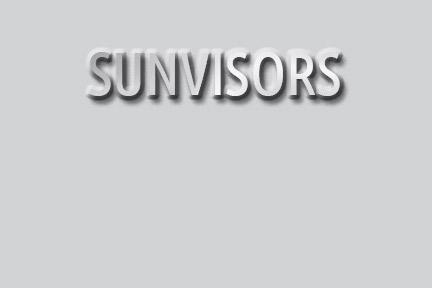 Sunvisors
